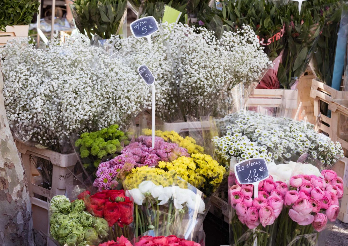 St.Tropez market news and views