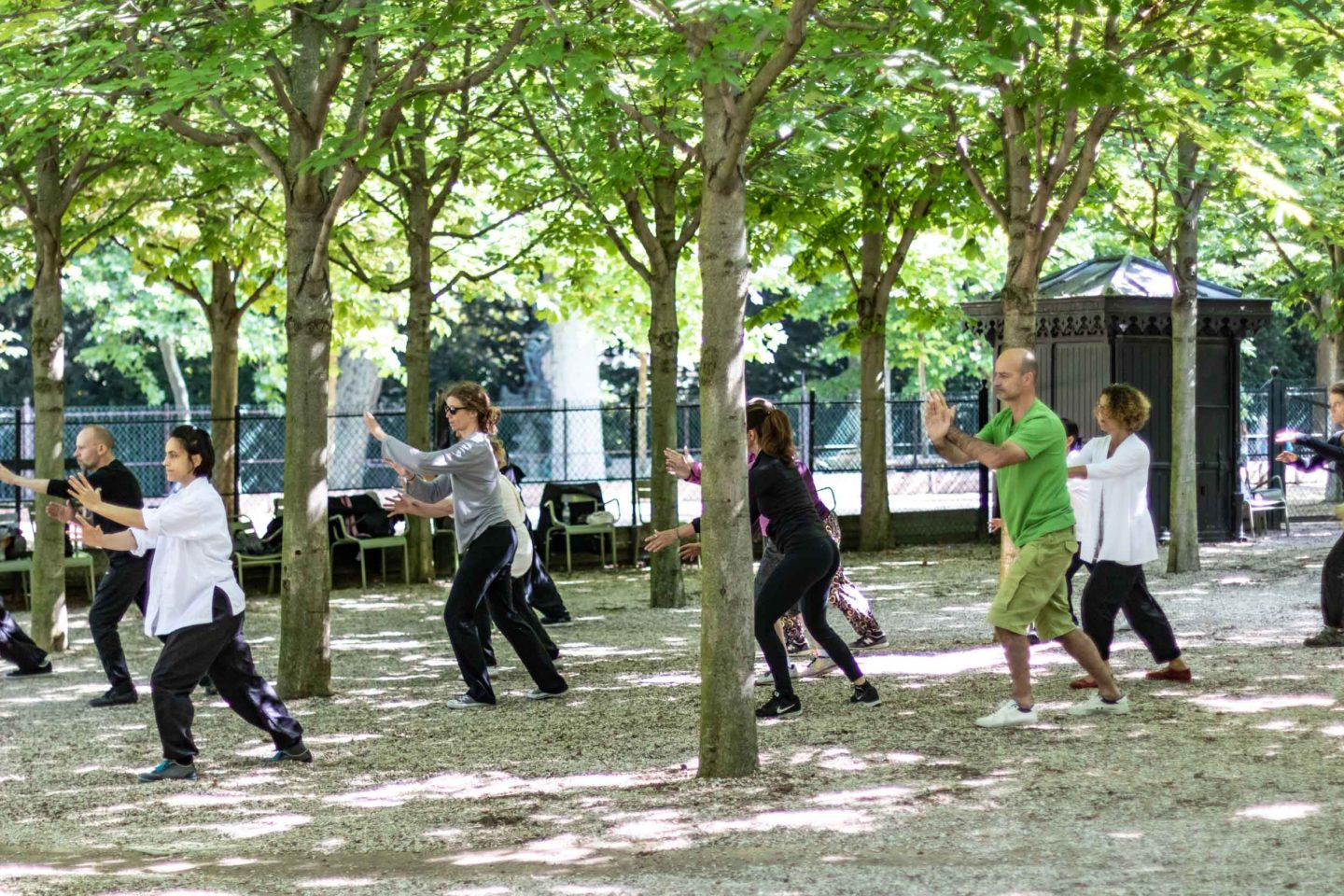 Tai Chi in the Jardin du Luxembourg