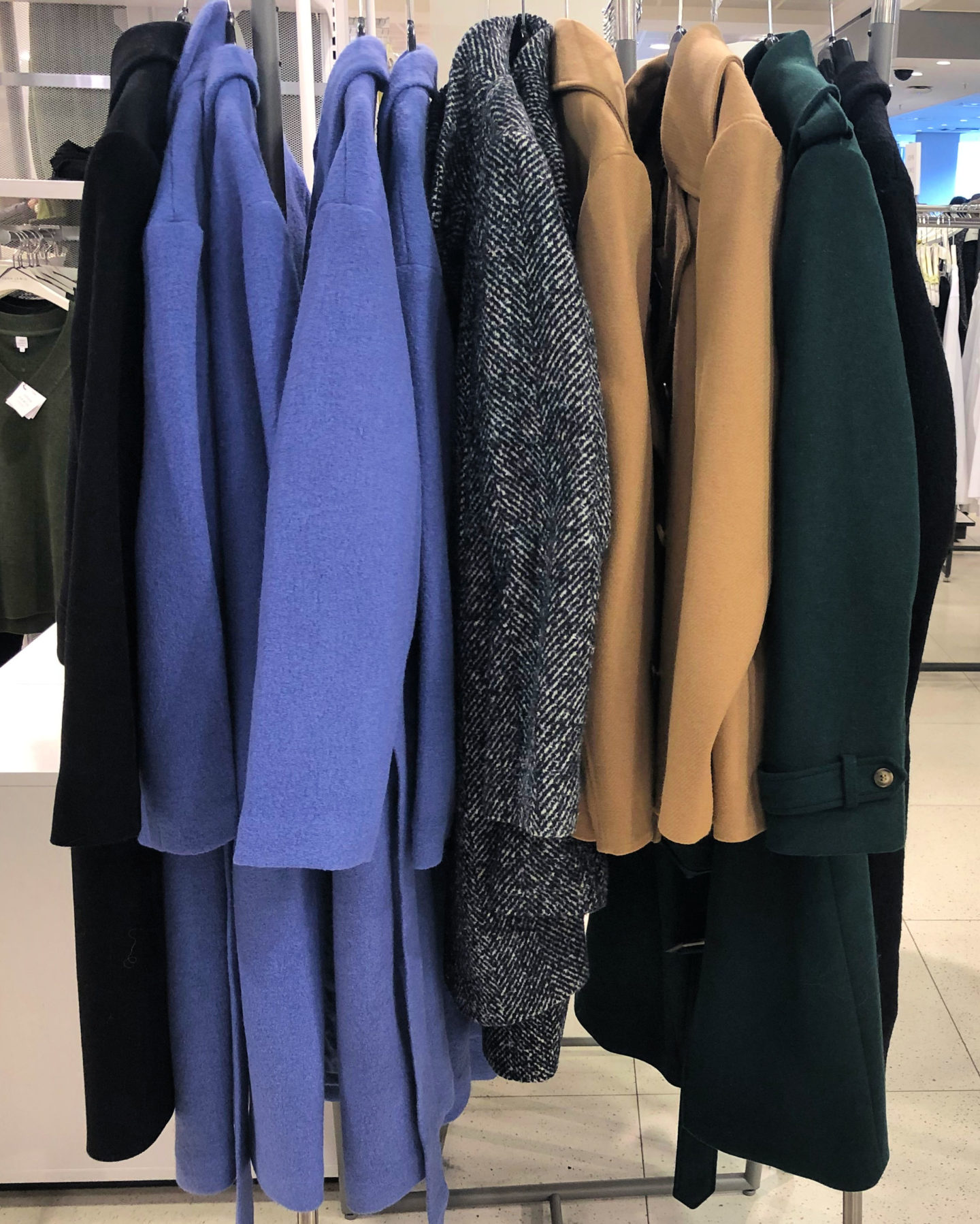 Bright blue and neutral coats